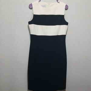 Jones  wares dress  size  8